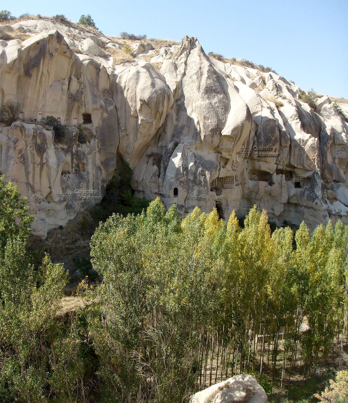 Пещеры Каппадокии и деревья.