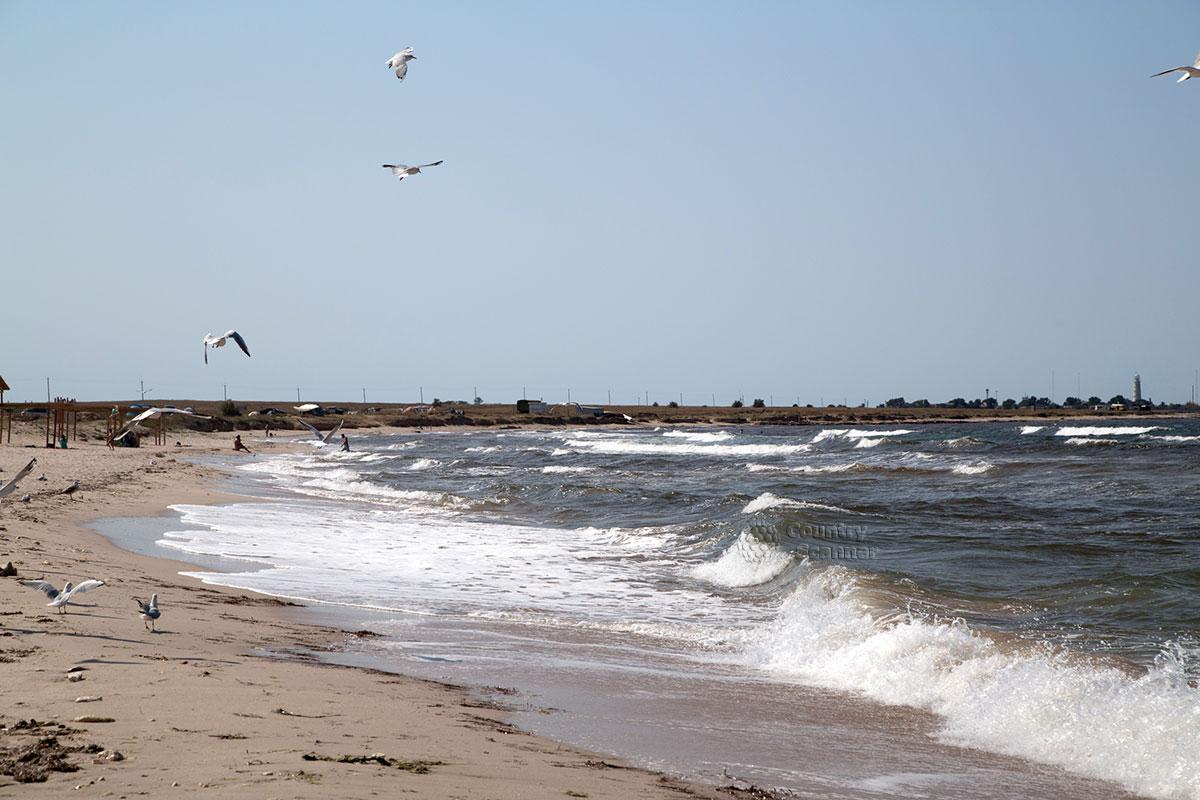 """""""Живое"""" море на пляже Оленевка."""