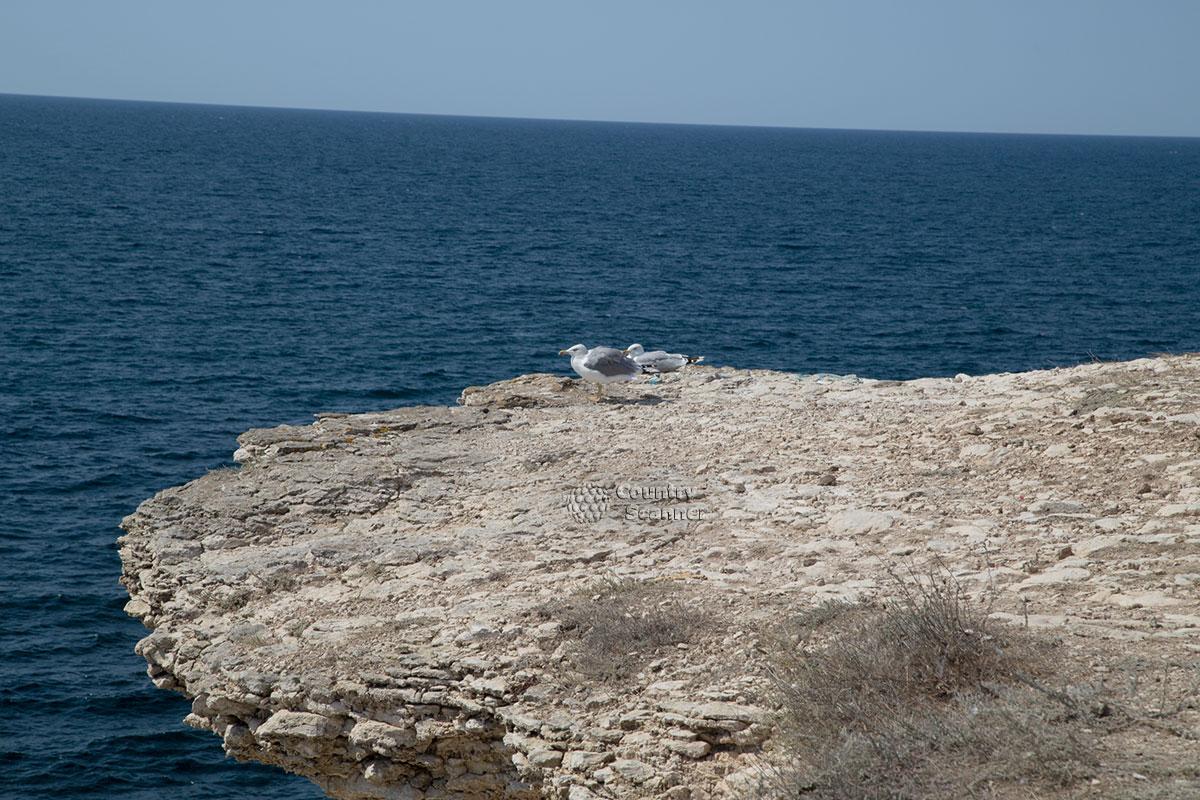 Один из пустынных пляжей мыса Тарханкут.