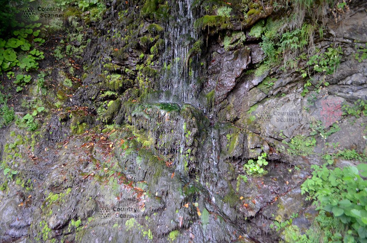 Струйки водопада Девичьи слезы, стекающие по зеленому мху.