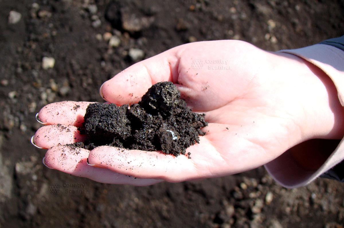 Почва со склона вулкана Этна в руке.