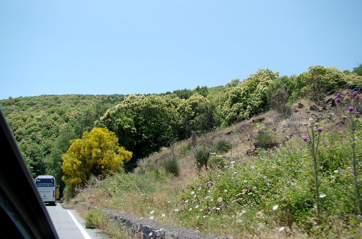 Дорога к вулкану Этна