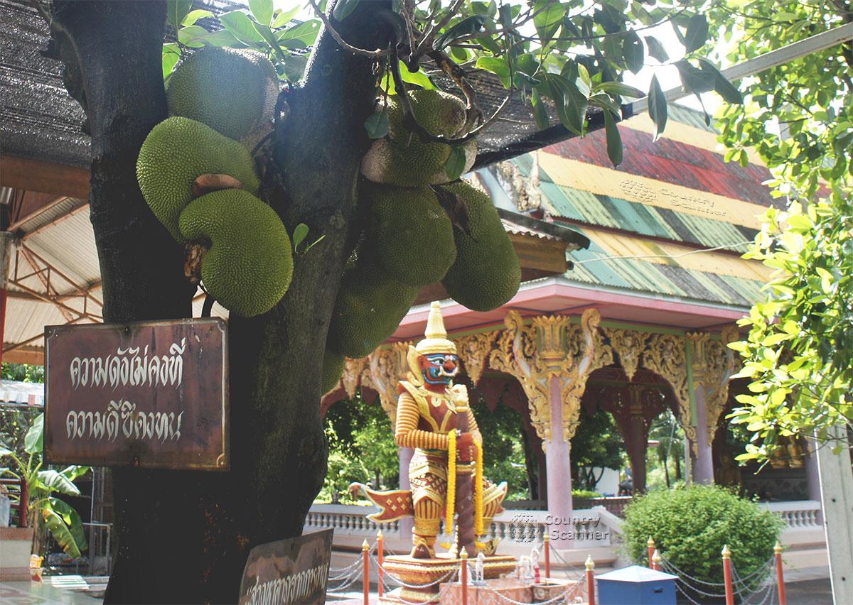 Зеленые плоды на дереве в Храме Ада и Рая